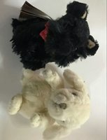 Used Teddy bear 2 pcs in Dubai, UAE