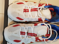 Sketchers Shoes. Running shoes new