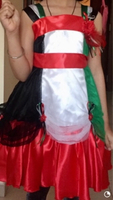 Used Girl costume for national day in Dubai, UAE