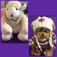 Used Lorenzo & Big Lefty Bukowski Bears  in Dubai, UAE