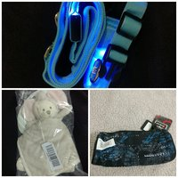 Used Led Dog collar + Teddy + Fgear pouch in Dubai, UAE