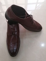 Used BROWN SHOES ELEGANT & OFFICE in Dubai, UAE