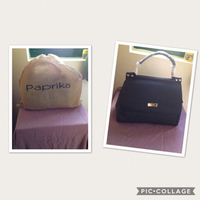 Used Brand new Paprika handbag in Dubai, UAE