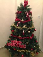 Used Christmas tree in Dubai, UAE