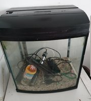 Used 60cm aquarium with accessories in image in Dubai, UAE