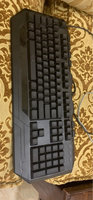 Used Xbox controller and keyboard in Dubai, UAE