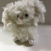 Used Bukowski small soft 🧸 toy in Dubai, UAE