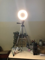 Used Ring LED light with tripod stand tiktok in Dubai, UAE