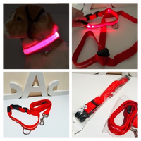 Used Dog collar & leash M with LED lights  in Dubai, UAE