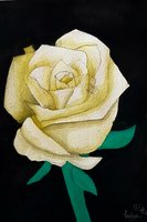 Used White Rose Flower Hand-Made Painting in Dubai, UAE