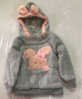 Used Babies hoodie size 110/fits 2-3years. in Dubai, UAE