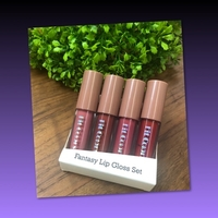 Used FIT COLORS LIP GLOSS in Dubai, UAE