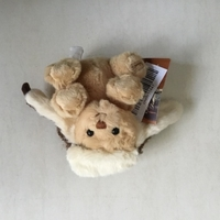 Used ToybeAr in Dubai, UAE