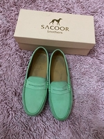 Green topsider from Sacoor