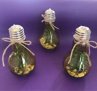 Used Bulb Decors in Dubai, UAE