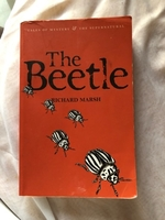 Used The Beetle by Richard Marsh  in Dubai, UAE