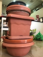 Used Garden items in Dubai, UAE
