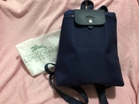 Used Long Champ Back Pack OEM in Dubai, UAE