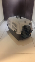 Used 20' 11' inch pet carrier  in Dubai, UAE