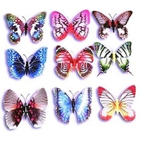 Used Butterfly fridge magnets in Dubai, UAE