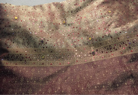 Used Saree with crystal and sequence work  in Dubai, UAE