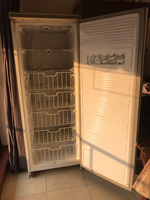 Vertical Freezer 300 Ltr