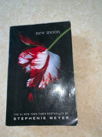 "Used ""New Moon"" Twilight Series Book in Dubai, UAE"