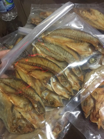 "Used ""HOME MADE DRY FISH"" in Dubai, UAE"
