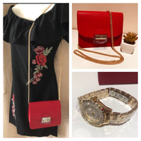 Bundle offer dress-bag-watch all new