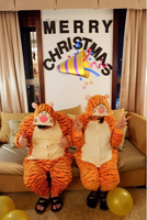 Used Tiger Costume for Unisex in Dubai, UAE