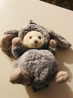 Used teddy bear 1 in Dubai, UAE