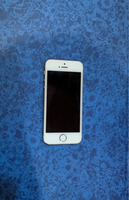 iPhone 5s in Gold (Clean)
