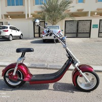 Used X7 Harley Style 2 Electric Motorbike in Dubai, UAE