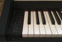 Used Electric piano in Dubai, UAE