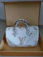 Used Speedy Bandoulier 30 Louis Vuitton Giant in Dubai, UAE