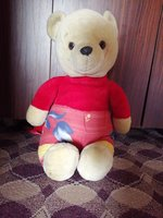 Preloved teddy bear