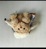 Used Teddy bear in Dubai, UAE