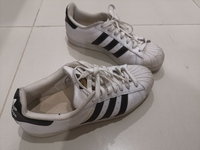Used Adidas Super Star in Dubai, UAE