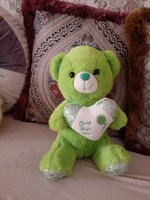 Used Green bear in Dubai, UAE