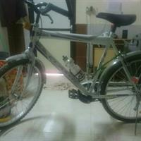 Used MTB CYCLE in Dubai, UAE