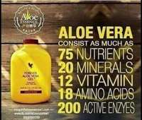 Used Aloe Vera Gel (SuperFood) in Dubai, UAE