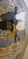 Used Branded Baby BOY Clothes (11 items) in Dubai, UAE