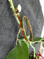 Bangle with ring BL-105