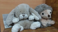 Used Cute soft animals toys in Dubai, UAE