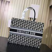 Used Christian Dior Canvas bag in Dubai, UAE