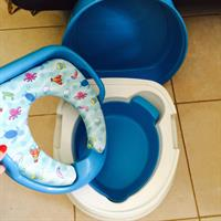Potty And Step Two In One