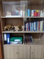 Used Showcase (Books/Files) in Dubai, UAE