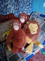 Used stuffed monkeys and a lion in Dubai, UAE