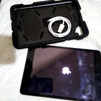 Used Ipad mini with case in Dubai, UAE