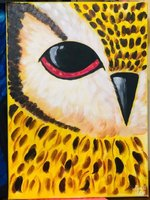 "Used ""Owl eye"" inspired by Artsherpa😍😎 in Dubai, UAE"